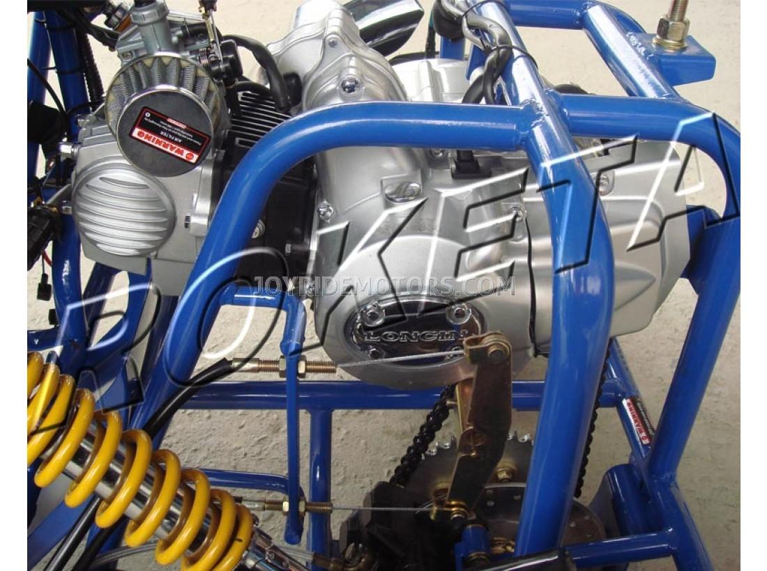 Raptor 110cc Go Kart Raptor Go Kart For Sale Joy Ride