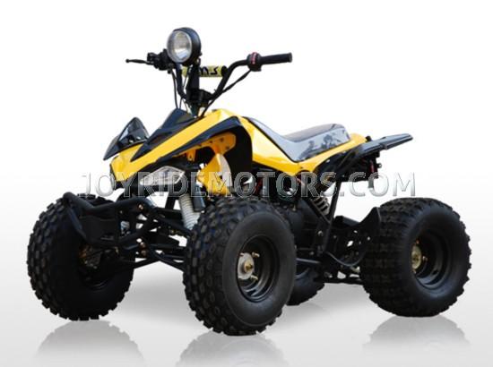 JOY RIDE CONDOR 125CC ATV For Sale