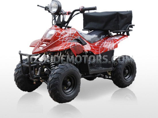 JOY RIDE BORDOK 110CC ATV For Sale