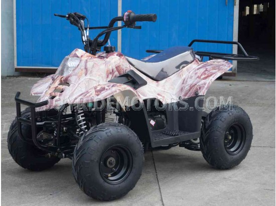 JOY RIDE LADY BUG 110CC ATV For Sale