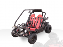 DIAMONDBACK 150CC GO KART For Sale