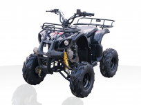 JOY RIDE KITTY HAWK 110cc ATV For Sale