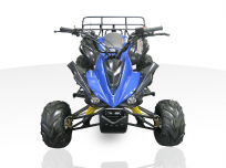JOY RIDE MONGOOSE 110cc ATV For Sale