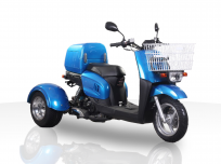 JOY RIDE METROPOLIS 49cc TRIKE For Sale
