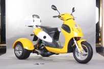 JOY RIDE CYCLOPS 50cc TRIKE For Sale