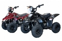JOY RIDE TARANTULA XS 110CC ATV For Sale
