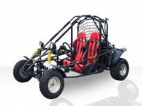 LIGHTNING LIZARD 150CC GO KART For Sale