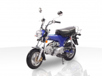 JOY RIDE CHEETA 125cc MINI BIKE For Sale