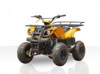 JOY RIDE MONARCH 125CC ATV For Sale