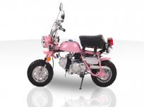 SPIDER MONKEY 110cc MINI BIKE For Sale