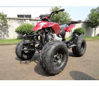 JOY RIDE BAJA SHREK 125CC ATV For Sale