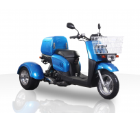 JOY RIDE METROPOLIS 49cc TRIKE For Sale