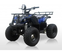 JOY RIDE TOMAHAWK 125CC ATV For Sale