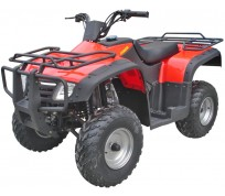 JOY RIDE SWAMP SHARK 250CC ATV For Sale