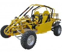 4RUNNER 1000CC DUNE BUGGY For Sale