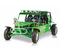 VELOCIRAPTOR XL1100CC DUNE BUGGY For Sale
