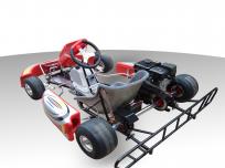 MANTA RAY 200cc RACING GO KART For Sale