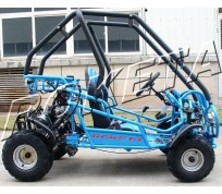 JOY RIDE RAPTOR 110CC GO KART For Sale