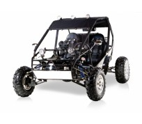 SAND STORM 250CC DUNE BUGGY For Sale